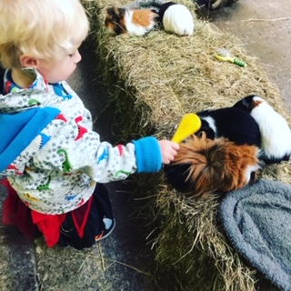 Hesketh Farm family fun